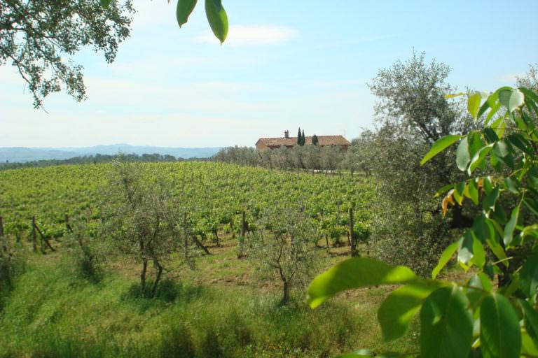 Agriturismo sulle colline fiorentine