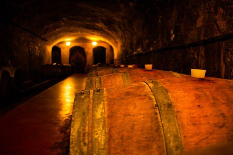 Il vino più storico delle colline pisane