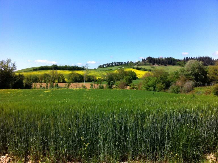 Camminare in Toscana