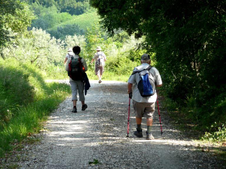 Camminate organizzate in Toscana