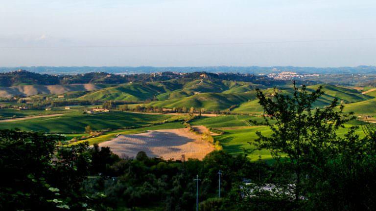Dolci colline delle Terre di Pisa
